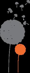 pissenlit orange & gris ok